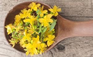 Healing Herbs – St John's Wort